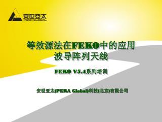 等效源法在 FEKO 中的应用 波导阵列天线 FEKO V5.4 系列培训