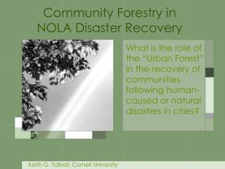 What is the role of the  Urban Forest  in the recovery of communities following human-caused or natural disasters in cit