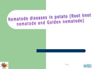 Nematode diseases in potato (Root knot  nematode and Golden nematode)