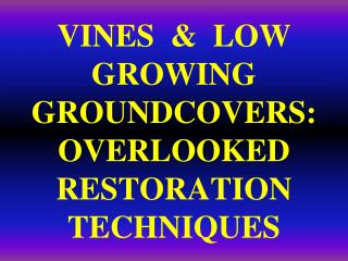 VINES  &  LOW  GROWING  GROUNDCOVERS:   OVERLOOKED  RESTORATION  TECHNIQUES