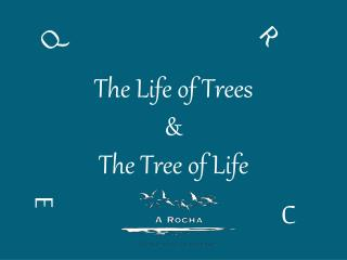 The Life of Trees & The Tree of Life