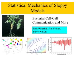 Statistical Mechanics of Sloppy Models