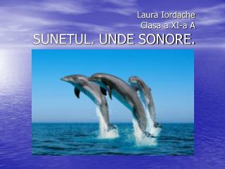 Laura Iordache Clasa a XI-a A SUNETUL. UNDE SONORE.