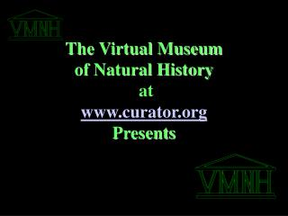 The Virtual Museum  of Natural History  at  curator Presents