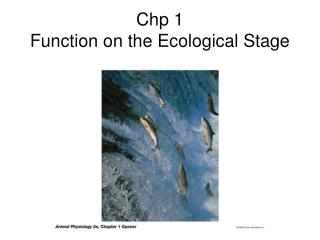 Chp 1 Function on the Ecological Stage
