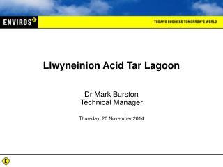 Llwyneinion Acid Tar Lagoon