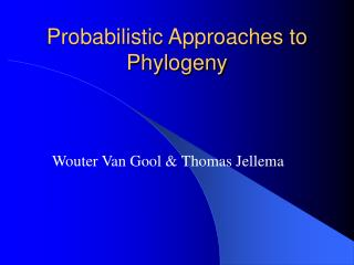 Probabilistic Approaches to Phylogeny