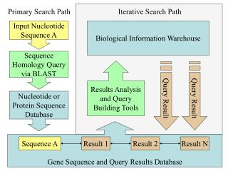 Gene Sequence and Query Results Database
