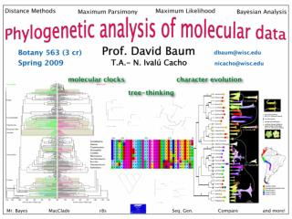 Botany 563:  Phylogenetic Analysis of Molecular Data
