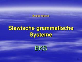 Branko To šović Slawische grammatische Systeme BKS