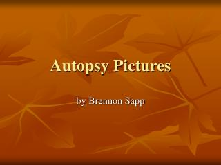 Autopsy Pictures