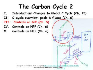 The Carbon Cycle 2