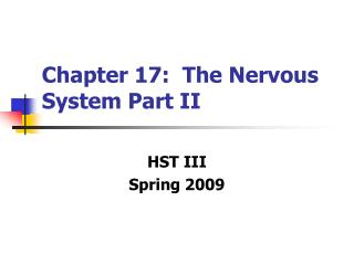 Chapter 17:  The Nervous System Part II
