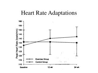 Heart Rate Adaptations