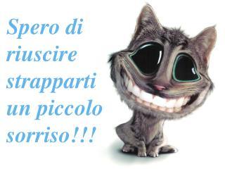Spero di riuscire strapparti un piccolo sorriso!!!