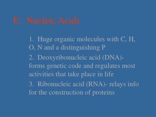 E.  Nucleic Acids
