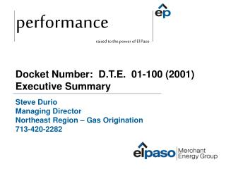 Docket Number:  D.T.E.  01-100 (2001) Executive Summary