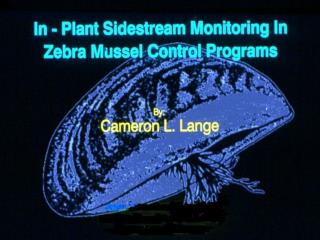 CLL Side Stream Monitoring