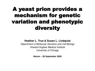 A yeast prion provides a mechanism for genetic variation and phenotypic diversity