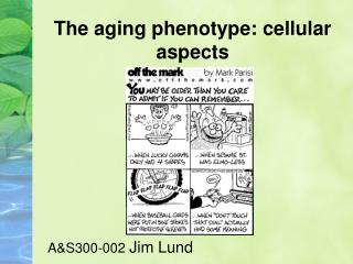 The aging phenotype: cellular aspects