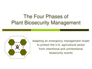 The Four Phases of  Plant Biosecurity Management
