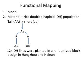 Functional Mapping