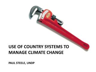 Use OF COUNTRY SYSTEMS TO Manage CLIMATE CHANGE  paul  Steele, UNDP