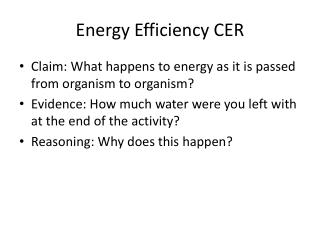 Energy Efficiency CER