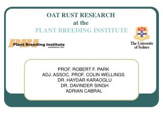 OAT RUST RESEARCH  at the  PLANT BREEDING INSTITUTE