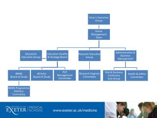 UEMS Administrative Structure