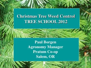 Christmas Tree Weed Control TREE SCHOOL 2012