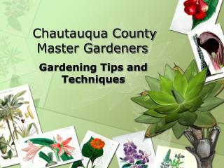 Chautauqua County Master Gardeners