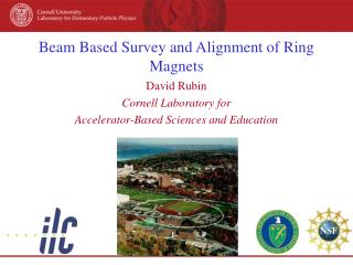 Beam Based Survey and Alignment of Ring Magnets