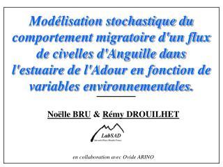 Noëlle BRU  &  Rémy DROUILHET en collaboration avec Ovide ARINO