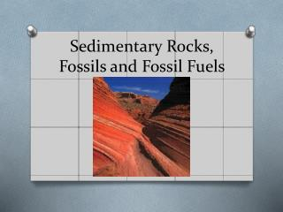 Sedimentary Rocks, Fossils and Fossil Fuels