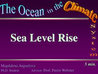 Magdalena  Anguelova Ph.D. Student               Advisor:  Prof. Ferris Webster