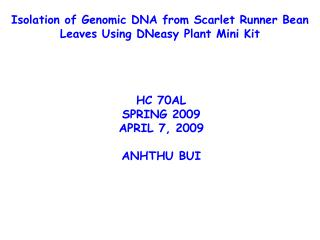 Isolation of Genomic DNA from Scarlet Runner Bean Leaves Using DNeasy Plant Mini Kit
