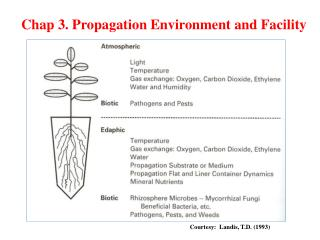 Chap  3.  Propagation Environment  and  Facility