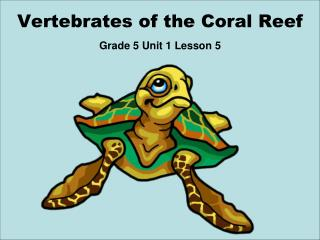 Vertebrates of the Coral Reef