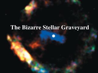 The Bizarre Stellar Graveyard