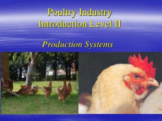 Poultry Industry Introduction  Level II