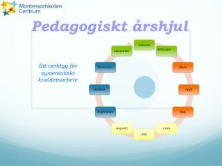 Pedagogiskt  årshjul