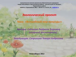 Авторы: Соболева Людмила Егоровна                 (старший воспитатель)