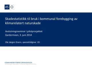 Skadestatistikk til bruk i kommunal forebygging av klimarelatert naturskade