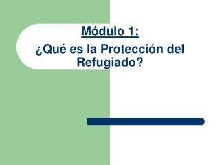 M ó dulo  1 : ¿Qué es la Protección del Refugiado ?