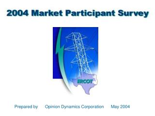 Prepared by      Opinion Dynamics Corporation      May 2004