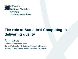 The role of Statistical Computing in delivering quality