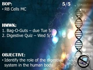 HMWK: Bag-O-Guts – due Tue 5/6 Digestive Quiz – Wed 5/7