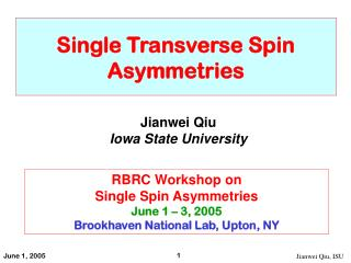 Single Transverse Spin Asymmetries