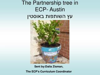The Partnership tree in ECP- Austin עץ השותפות באוסטין